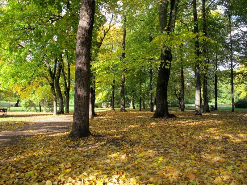 Frogner Park in Oslo