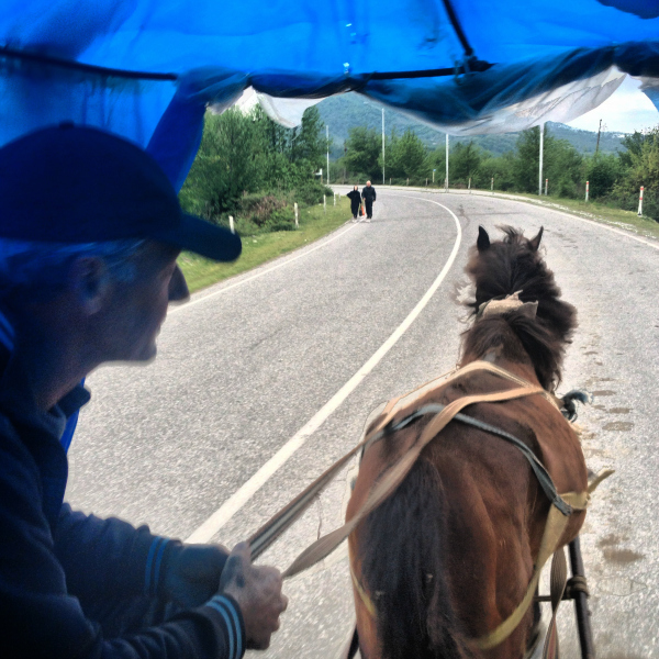 Horse and buggy that takes you to and from the Abkhazia-Georgia border