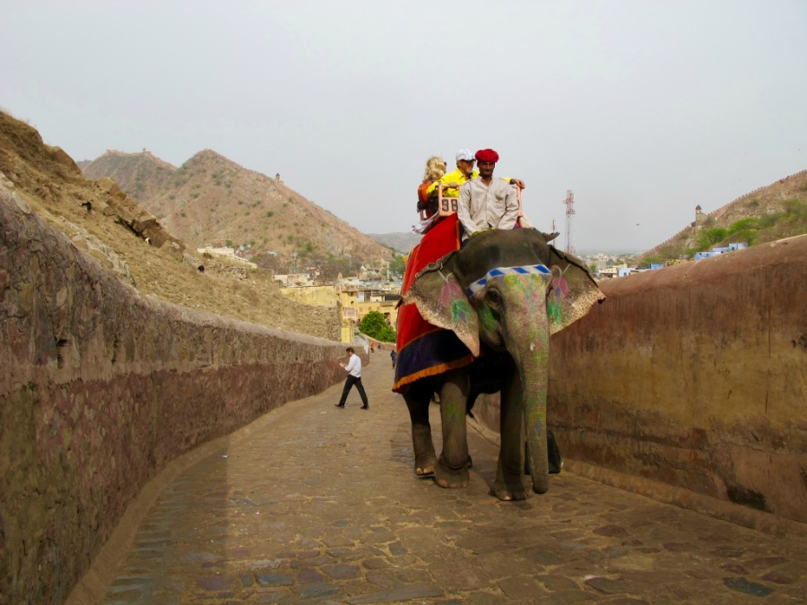 Tourists riding an elephant in Jaipur and contributing to animal cruelty.