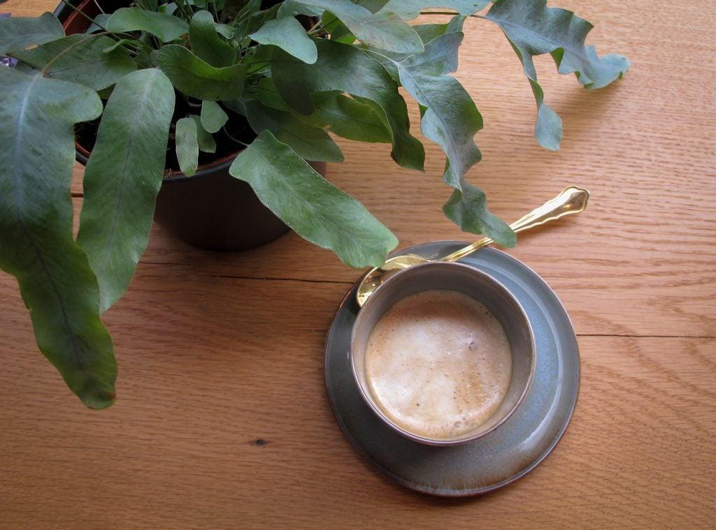Double shot almond milk cortado at Hector und Tilda in Dusseldorf