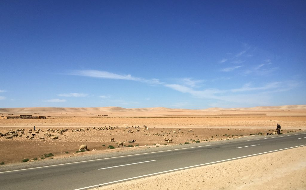 The road to and from Essaouira, Morocco