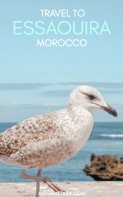I took a day trip from Marrakech to Essaouira, Morocco and found such beautiful blue views and good vibes in the Atlantic port city.