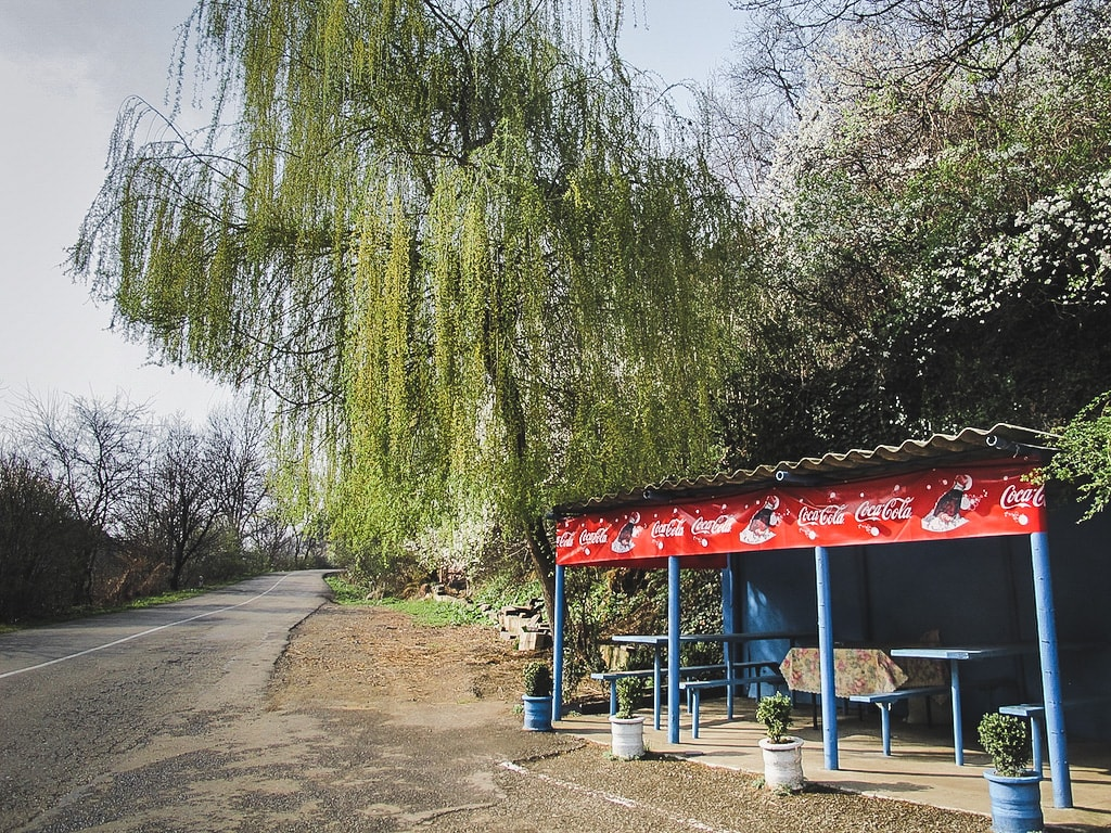 How to Travel From Tbilisi to Yerevan by Bus (Marshrutka) road side stop cafe