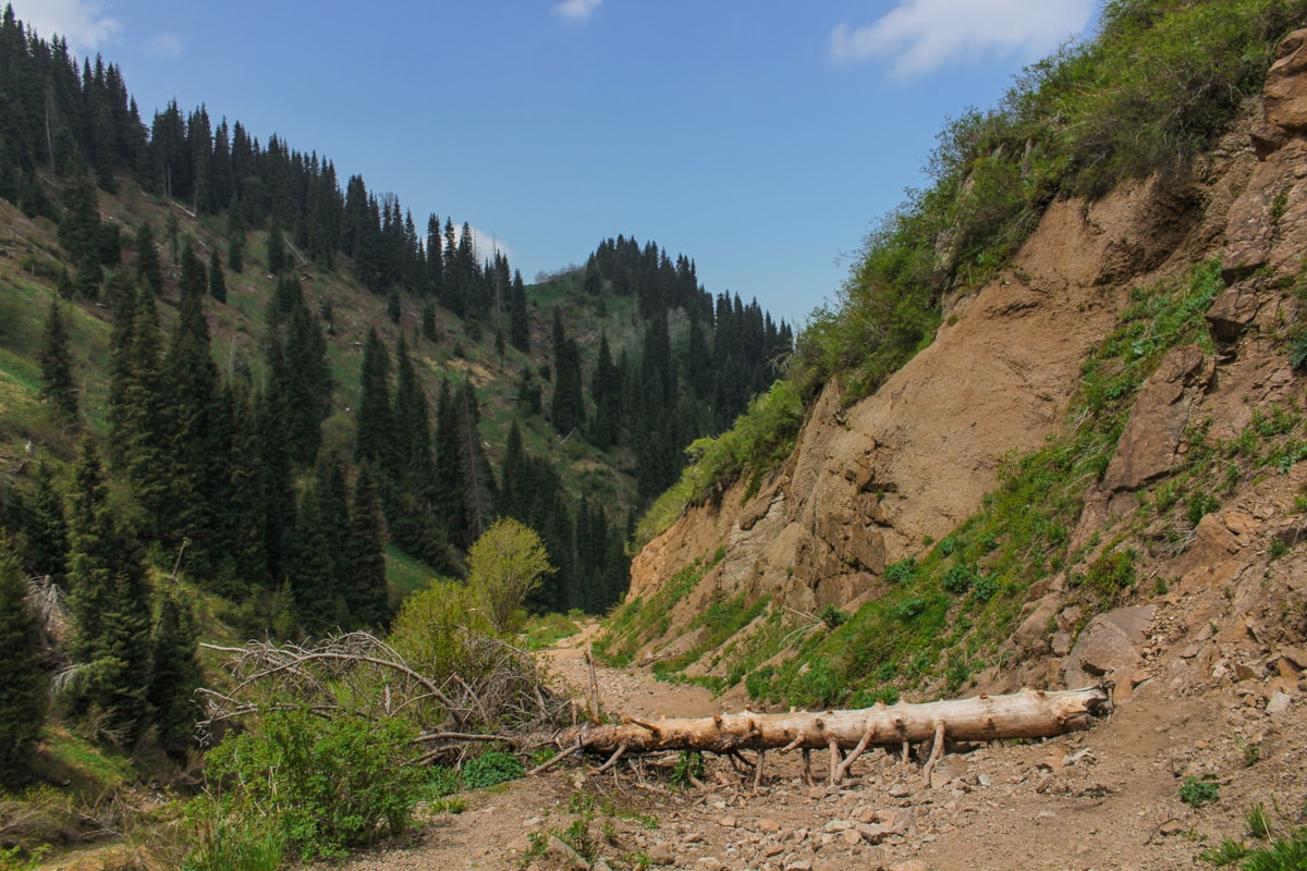 Hiking to Butakovskiy Waterfall in Almaty: Kazakhstan Nature at its Finest and a Day Trip from Almaty