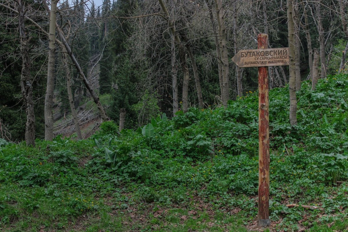 Hiking to Butakovskiy Waterfall in Almaty: Kazakhstan Nature at its Finest and a Day Trip from Almaty sign