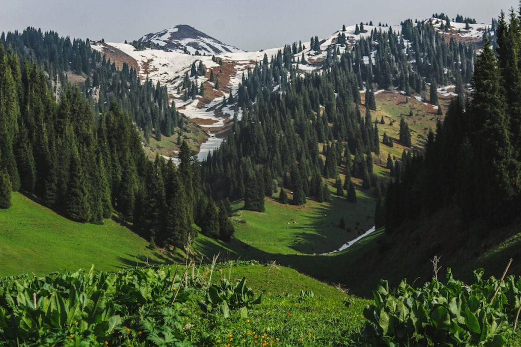 Hiking to Butakovskiy Waterfall in Almaty: Kazakhstan Nature at its Finest and a Day Trip from Almaty mountain