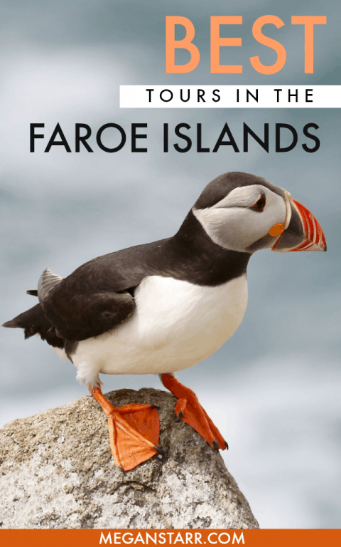 Faroe Islands Tours and Excursions: From Seeing the Puffins on Mykines to the Bird Cliffs in Vestmanna and Beyond! #faroeislands #faroes #scandinavia #nordics #islands #puffins #tours #torshavn #kalsoy