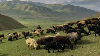 Starry Song Kul Nights Trail in Kyrgyzstan: From Kyzart to Kilemche