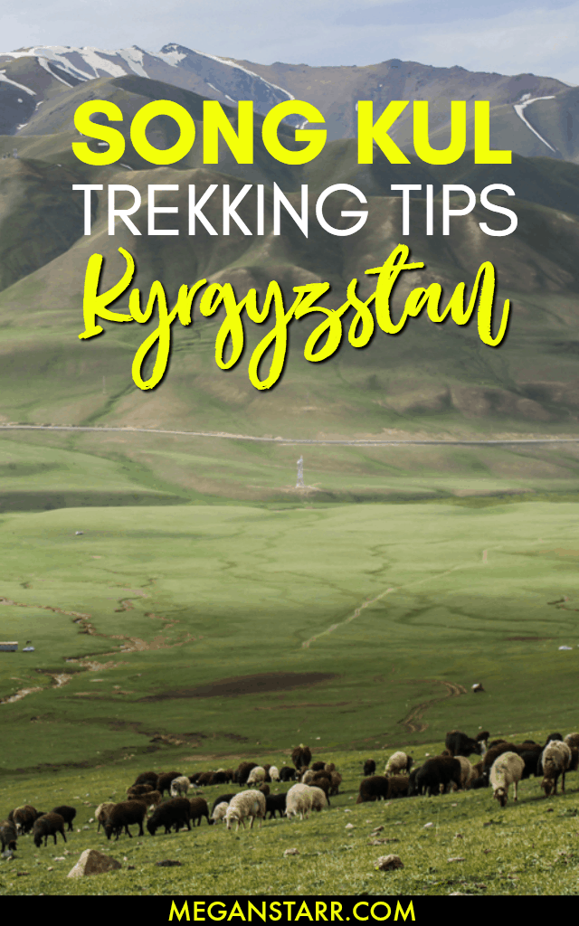 Song Kul is one of the most famous lakes and trekking destinations in Kyrgyzstan. This post documents my experience on the Starry Song Kul Nights Trail from Kyzart to Kilemche. #kyrgyzstan #traveltips #trekking #trek #centralasia #songkul #songkol #naryn #jumgal #asia #hiking