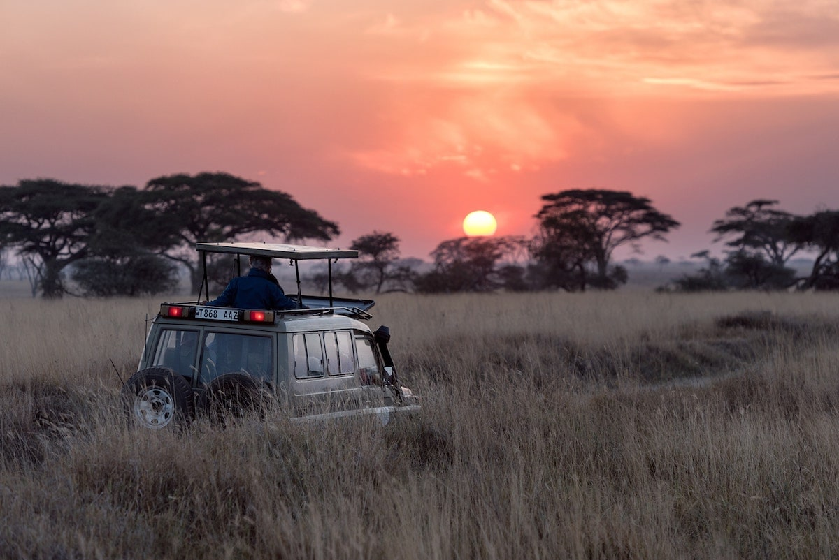 5 Must-Visit Safari Destinations in Africa