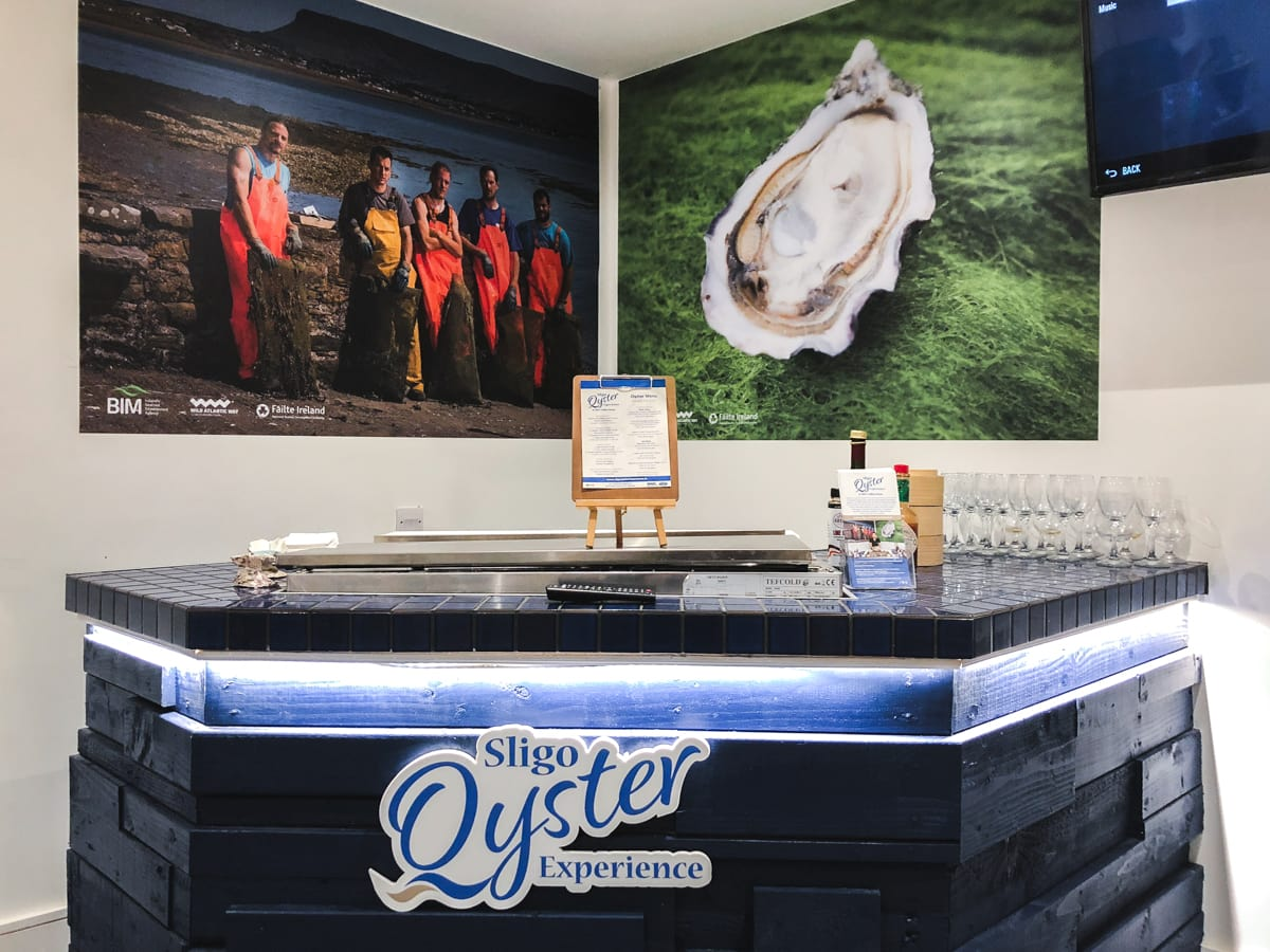 sligo oyster experience in sligo town ireland