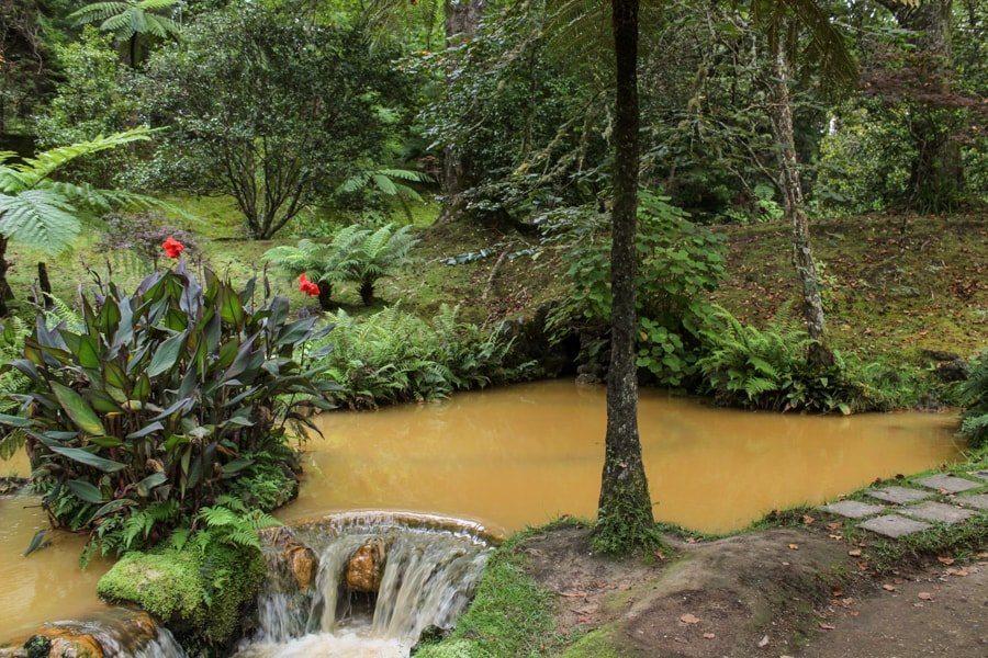 terra nostra botanical garden in azores