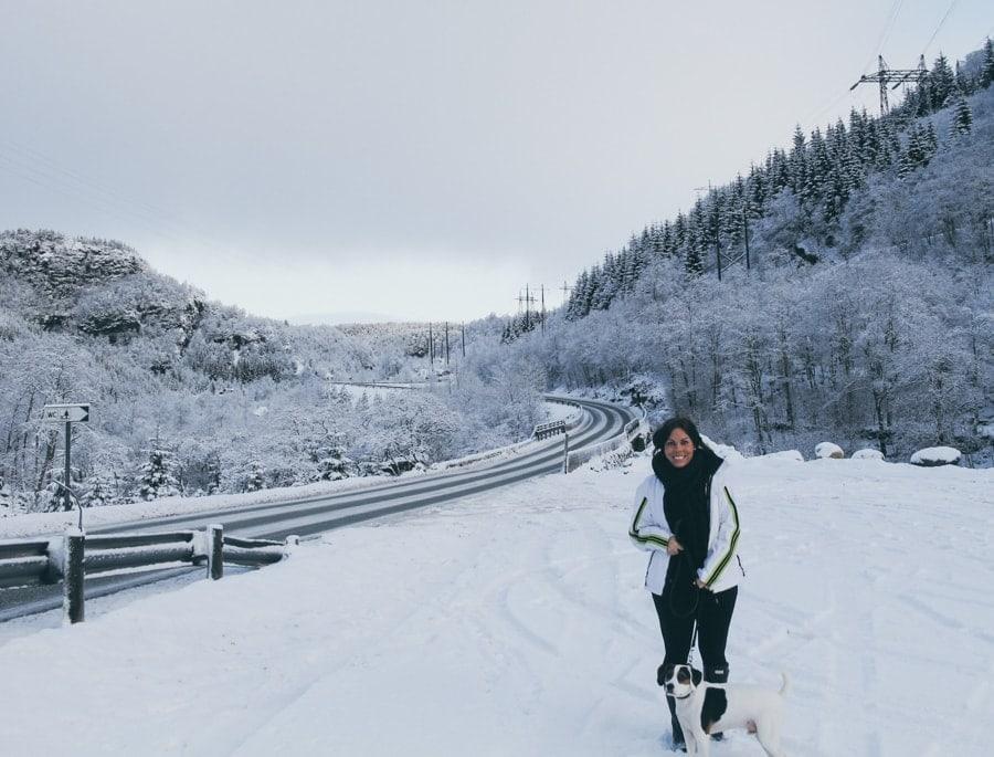 day trips from bergen kvamskogen norway
