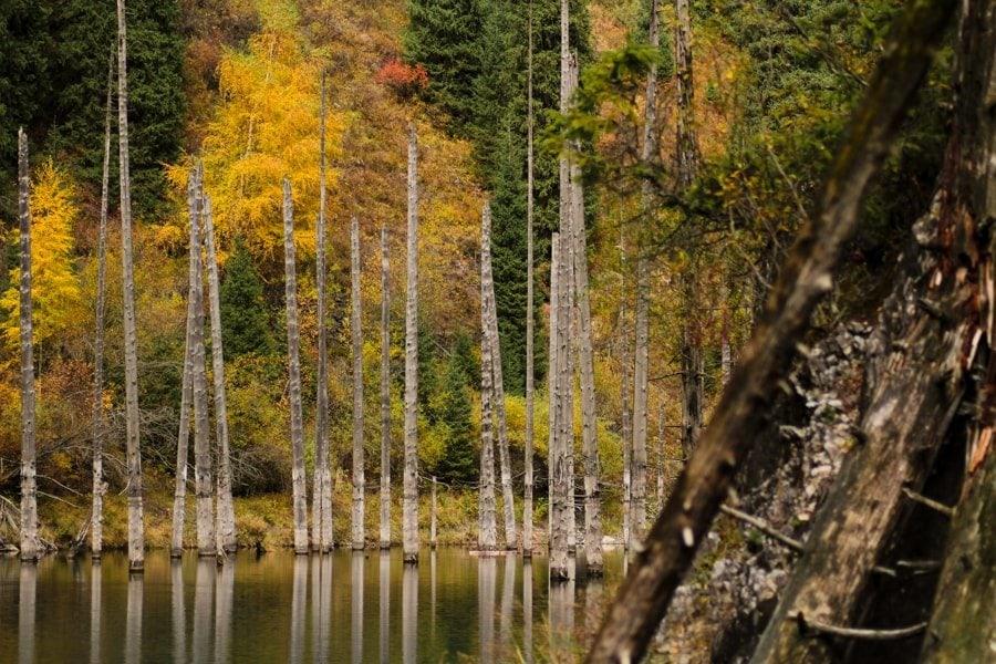 Lake Kaindy and Kolsai Lakes in Kazakhstan -3-min