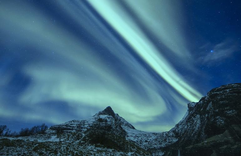 whale watching in tromsø under northern lights