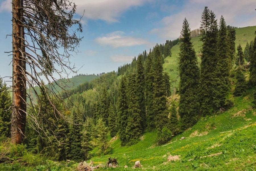 best day trips from almaty kazakhstan-3-min