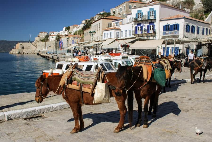 Hydra Greece (things to do in Hydra Island, Greece)-49