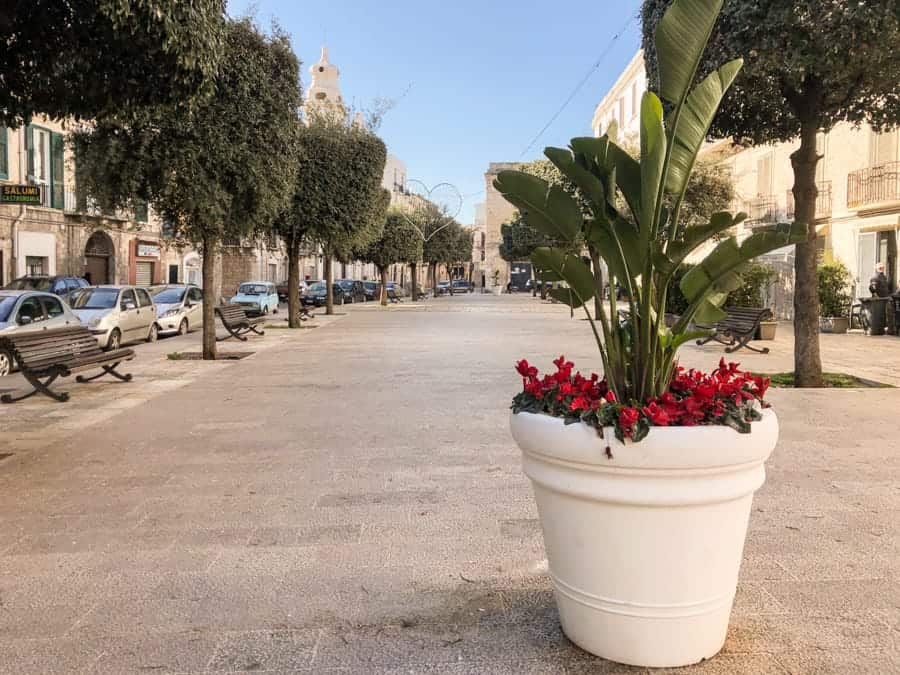 A quiet square in Trani, Italy