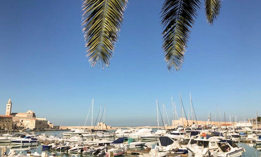 Port in Trani, Italy