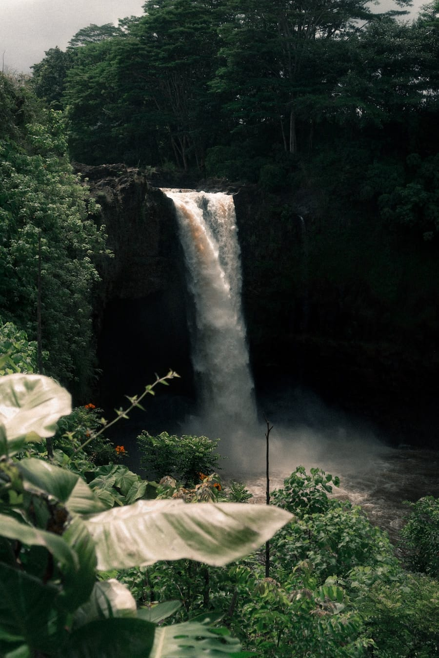 Rainbow Falls- Useful things to know before you visit the Big Island Hawaii