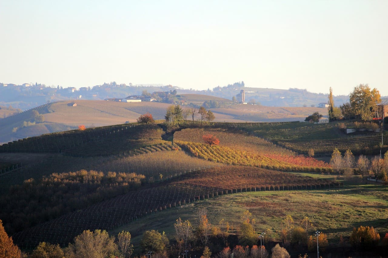 langhe day tour from milan