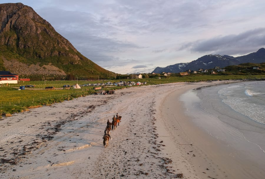 riding horses in lofoten islands
