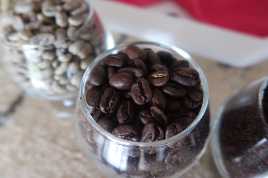 Colombia Coffee Tours and Experiences in Medellin and Beyond