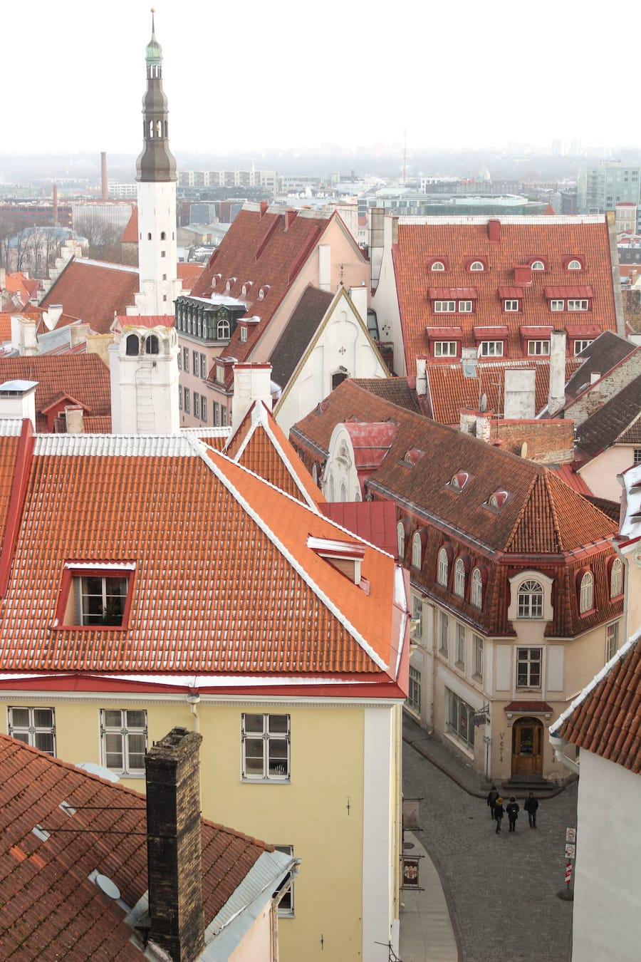 Things to do in Tallinn in Winter-14