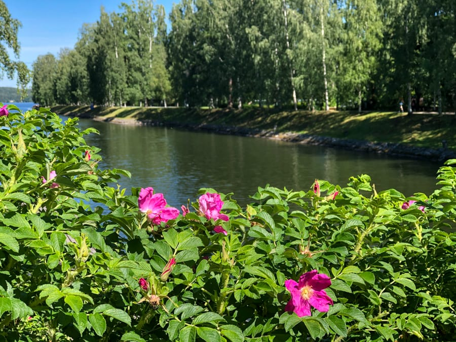 things to do in lahti and reasons to visit lahti in finnish lakeland-23