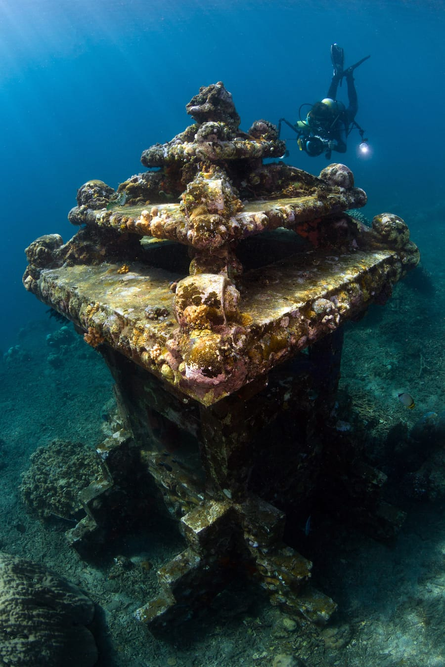 Scuba Diving in the Azores - Azores diving guide and PADI certification and qualifications-2-2