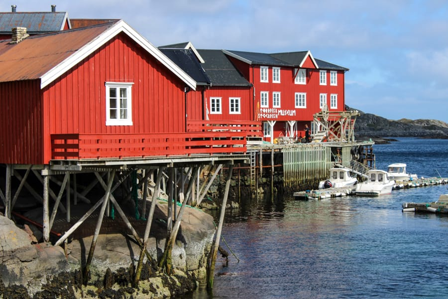 Things to know before your visit Lofoten Islands-5