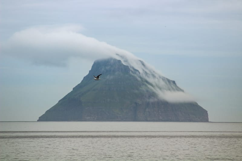 Litla Dimun in Faroe Islands ands seabirds