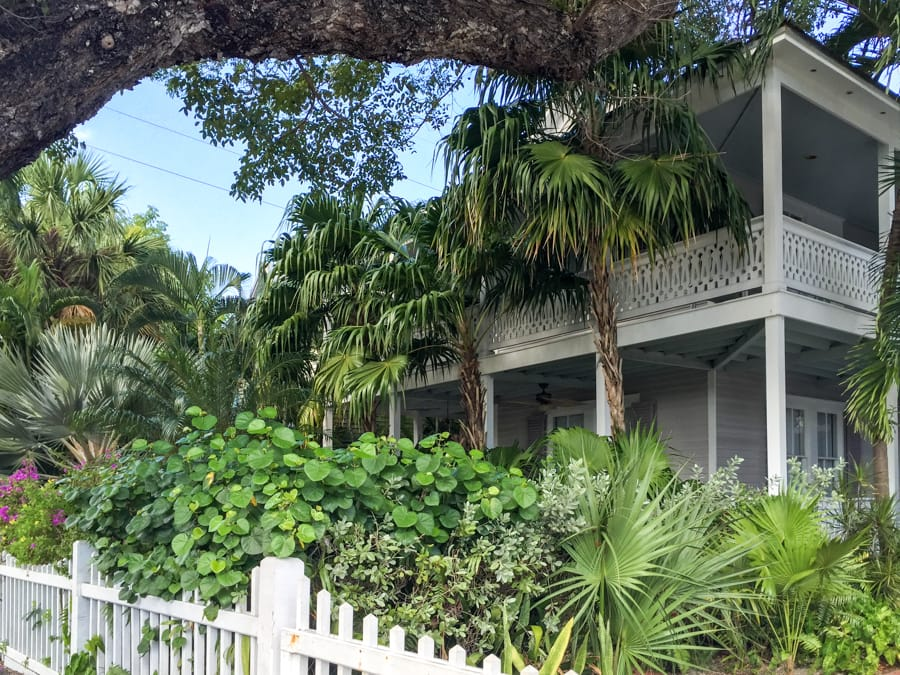 Things to do in Key West in December - Winter in Key West guide for Travelers (Florida)