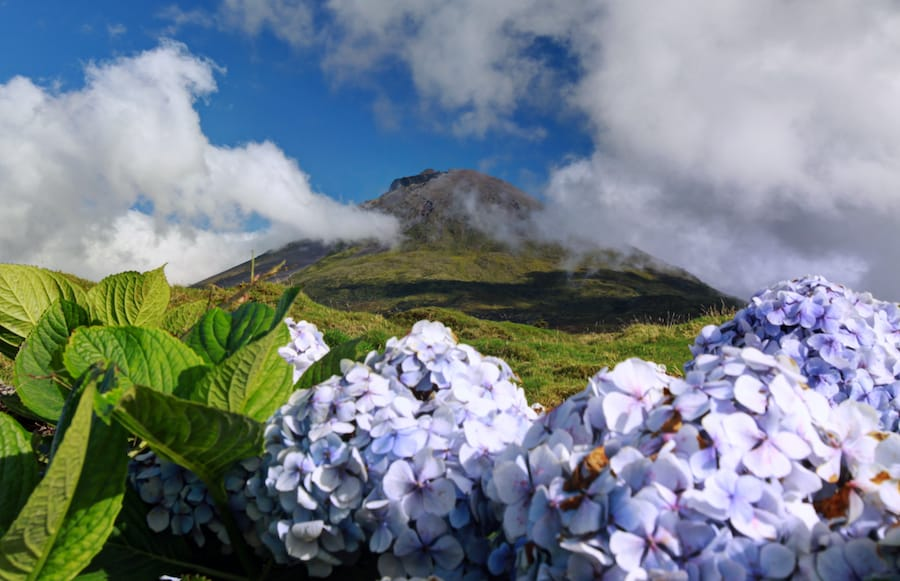 7 Things to Do on Pico, the Mountain Island in the Azores