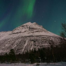 Tromsø itinerary- how to maximize your Tromsø trip with 2-5 days there (best northern lights tours, dog sledding tours, etc)