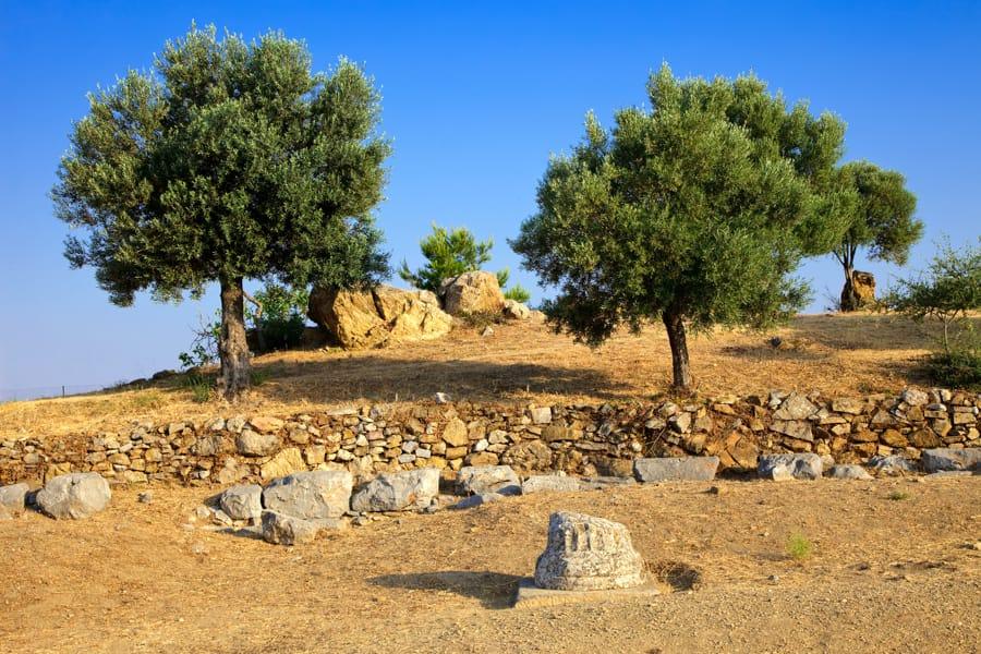 Things to do in Poros, Greece (Saronic Islands): Sanctuary of Poseidon