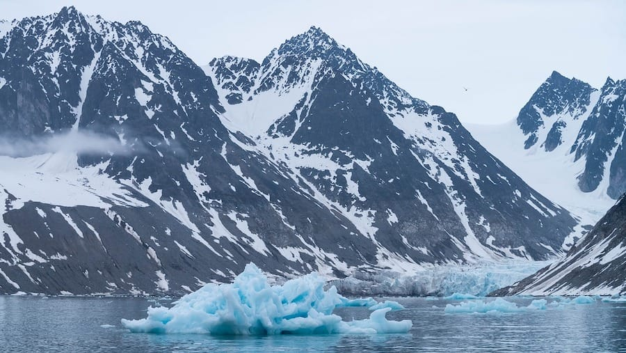 Best Svalbard Tours: 12 Excursions That Are Worth Your Money