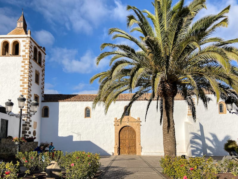 Corralejo Excursions (Fuerteventura Tours and More)-3-2