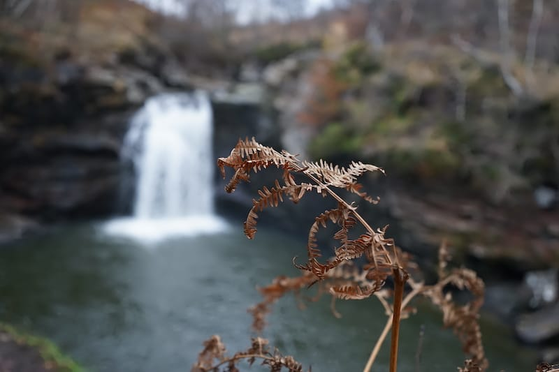 glasgow day tours: falls of falloch