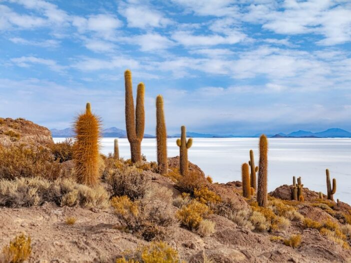 12 Very Useful Things to Know Before You Travel to Bolivia