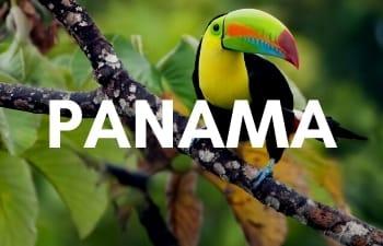 Megan & Aram Travel Destinations | Travel to Panama