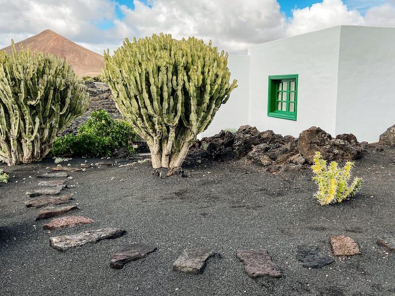 Visit Lanzarote during winter: Cesar Manrique Foundation