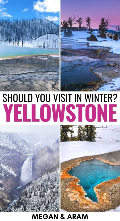 Yellowstone in Winter: Reasons to Visit, Things to Do, & Tips | Are you planning a trip to Yellowstone in winter? This guide details what to do in winter in Yellowstone National Park, including where to stay and more! | Things to do in Yellowstone | Wyoming winter | Visit Yellowstone | US National Parks | Yellowstone in December | Yellowstone in January | Yellowstone in February | Yellowstone snow | Yellowstone wildlife | Things to do in Wyoming | National Parks to Visit in winter