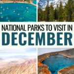15 Best National Parks to Visit in December (+ Useful Tips): Are you looking for the best national parks to visit in December? This guide details fifteen great US National Parks to visit in December and gives many tips. | Places to visit in USA | USA National Parks | America National Parks | Yellowstone in Winter | Grand Canyon in Winter | National Parks to visit in Winter | USA Winter