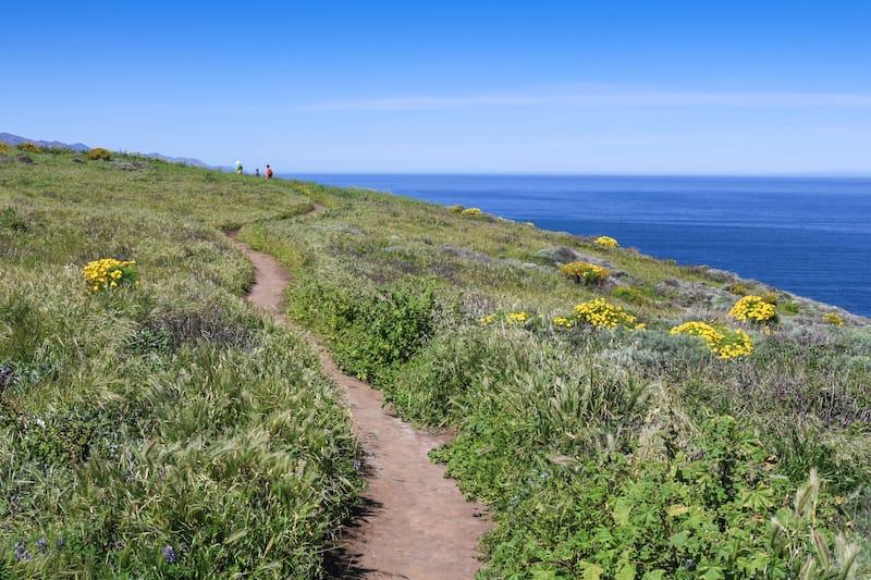 Hiking trail on Santa Cruz Island, Channel Islands National Park