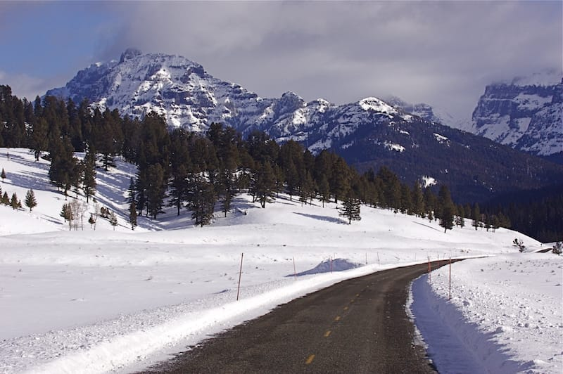 Northeast Entrance Drive, Yellowstone National Park; this is one of the only roads in the park that is open in the winter