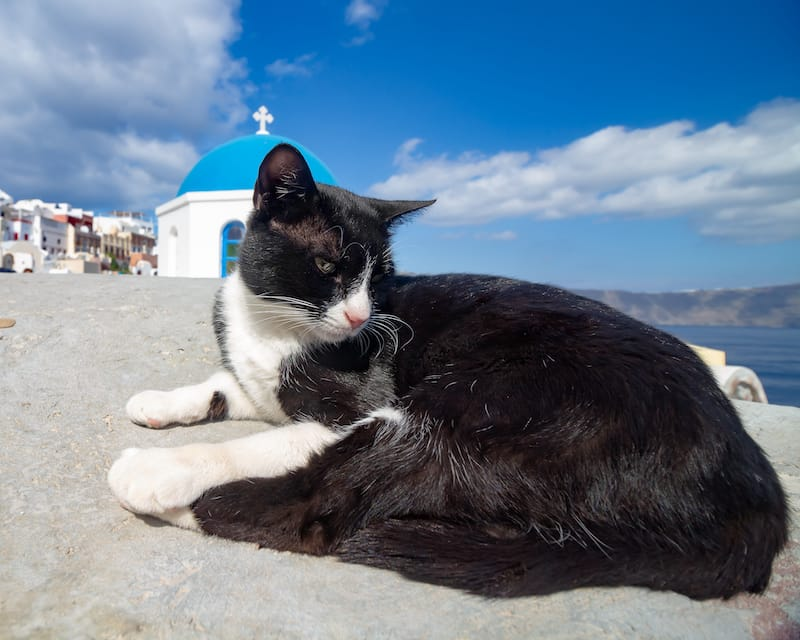 Santorini in winter