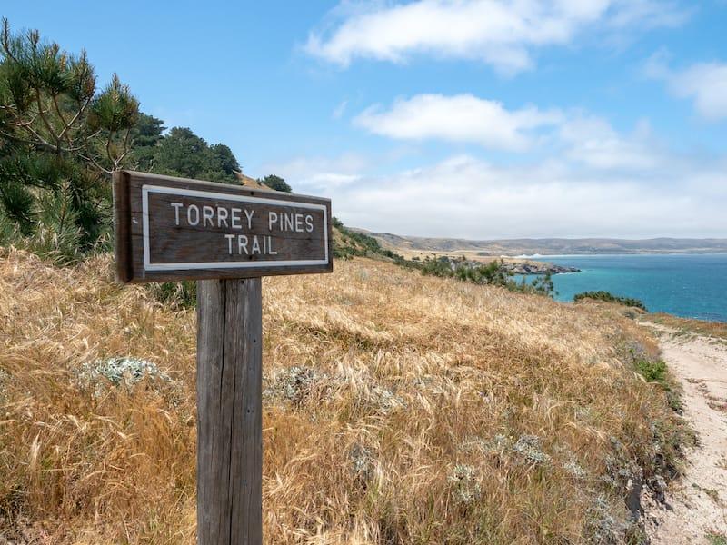 Torrey Pines trail Santa Rosa Island in California