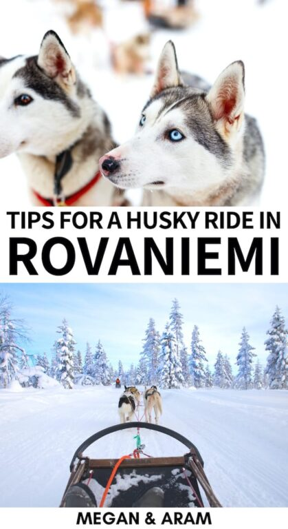Are you planning to go dog sledding in Rovaniemi on your Lapland trip? This guide details the best husky tours in Rovaniemi, what to wear, and much more! | Dog sledding Lapland | Dog sledding Rovaniemi | Husky ride Rovaniemi | Rovaniemi tours | Rovaniemi husky safari | Finland dog sledding | Finland winter | Rovaniemi winter | Things to do in Rovaniemi | Things to do in Lapland
