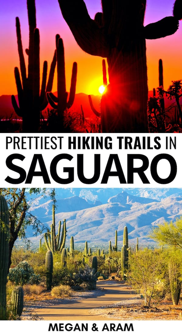 Are you looking for the best hikes in Saguaro National Park? This guide details the best Saguaro National Park trails and the info you need for hiking them. | Saguaro National Park hikes | Saguaro trails | Arizona hiking | Arizona hikes | hiking in Arizona | Tucson hikes | Day hikes in Tucson | Rincon Mountains | Day hikes Saguaro National Park | Saguaro National Park winter